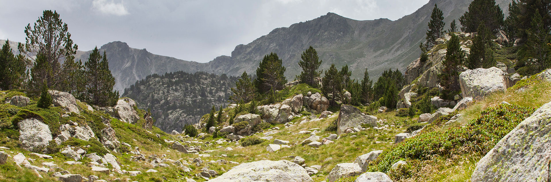 luxury hotel in soldeu with hiking tours andorra